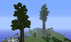 我的世界自然(Natura)MOD 1.12.2/1.11.2