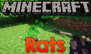我的世界老鼠(Rats)MOD