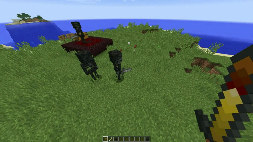 我的世界凋零骷髅调整(Wither Skeleton Tweaks)MOD